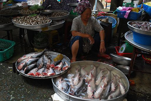 River Fish Consumed in Vietnam Linked to Deadly Cancer: VA Disability Benefits?