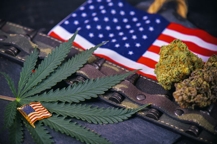 Congress Will Consider Putting an End to VA's Policy of Home Loan Denials to Legal Cannabis Industry Workers